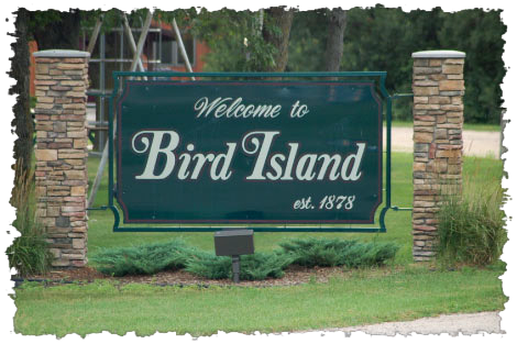 birdisland2